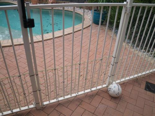 Plastic mesh fixed to another wise compliant pool fence – little dogs mightn't drown but what about the kiddies? Maybe an extra invitation if the ball was in the pool area or even in the pool
